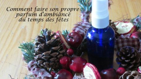 Comment faire son propre parfum d'ambiance du temps des fêtes